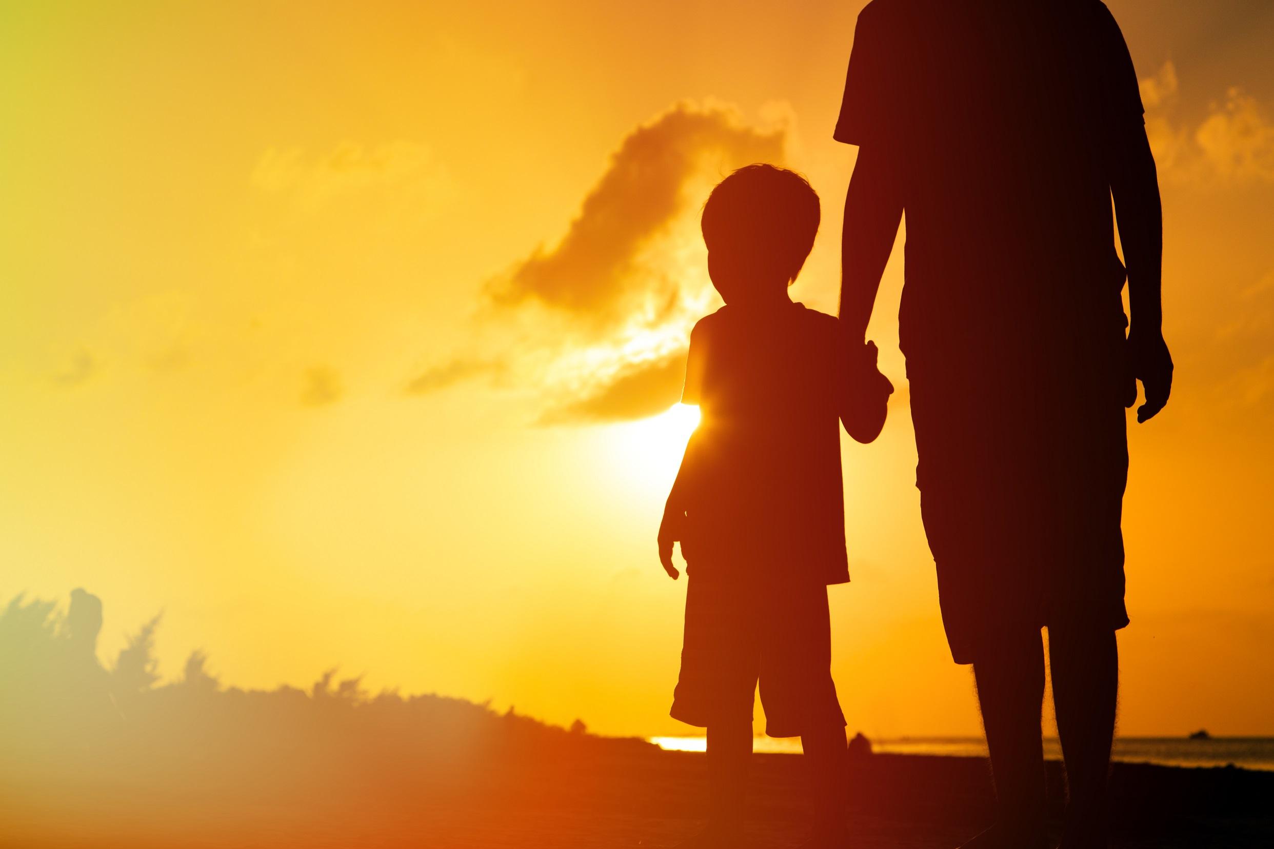 tata si fiu 2 redimensionata - Viață Curată